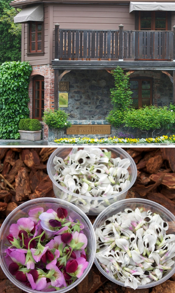 Top: The French Laundry, Bottom: freshly harvested edible blossoms