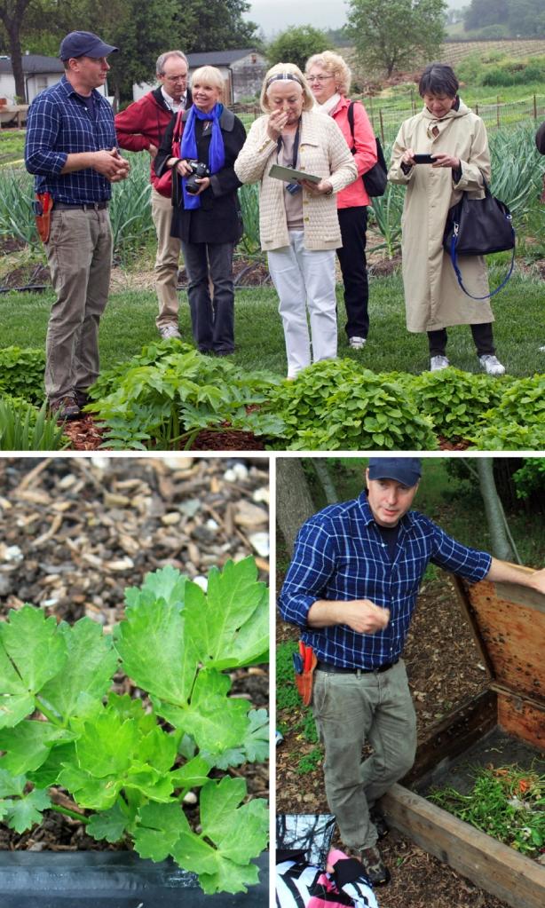 Top: Garden Manager Aaron Keefer offers a taste of lemon balm, Left: young celery, Right: the escargot farm